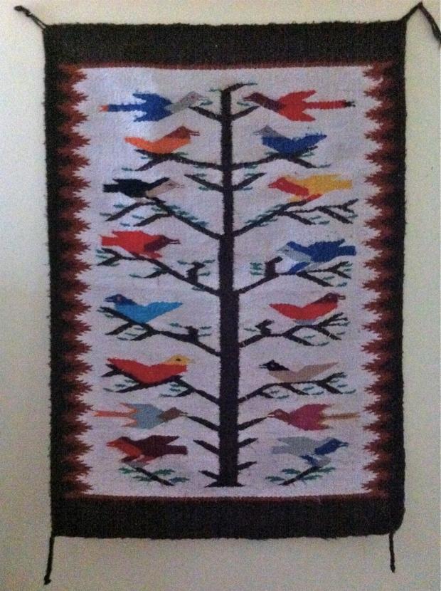 navajo birds