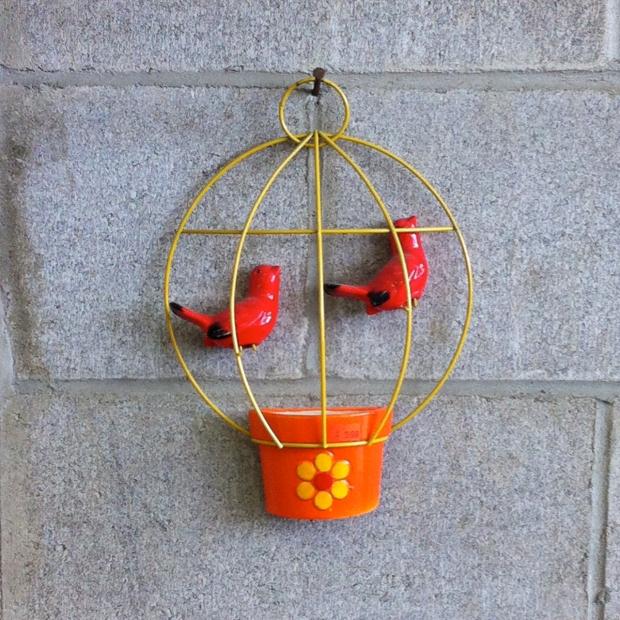 SAS Birds