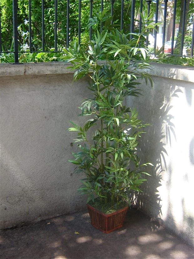 free fake plant