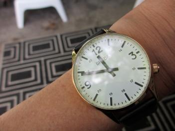 blog drake watch