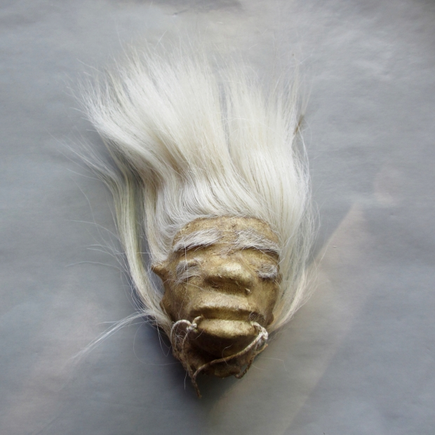 blog shrunken head