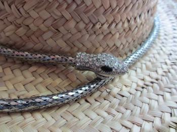 blog snake 2