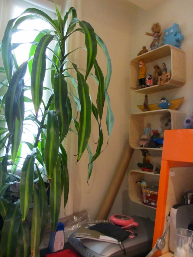 blog house 1