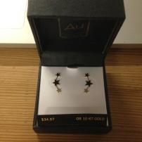 constellation earrings.jpg