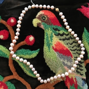 blog Parrot and Pearls